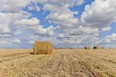 收获与秸杆大包的风景在领域中在秋天 免版税库存图片