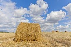收获与秸杆大包的风景在领域中在秋天 免版税图库摄影