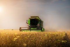收获与组合的大豆领域 免版税库存照片
