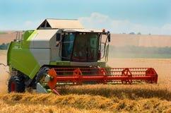 收获与联合收割机的五谷 日域热夏天麦子 免版税图库摄影