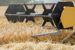 收获与联合收割机的大麦 库存图片