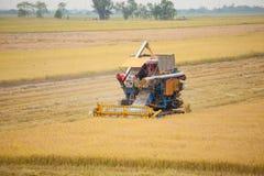 收获与组合机器的农厂工人米 库存照片