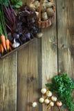 收获从红萝卜,甜菜根,葱,在老木板的大蒜的新鲜蔬菜 顶视图 复制空间 免版税库存图片