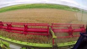 收获剪床的麦子 股票录像