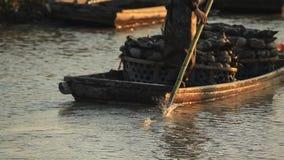 收获和 运输由人力的莲花根在Chagan湖,吉林,中国 库存照片