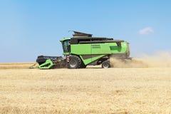 收获在一台收割机的麦子在一个夏日 农业 免版税库存图片