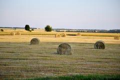 收获在农村风景的秸杆 库存图片