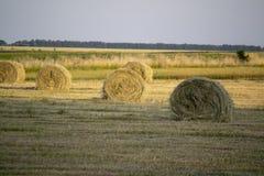 收获在农村风景的秸杆 免版税库存照片