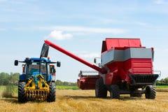 收获在夏天期间的结尾的麦子 免版税库存照片