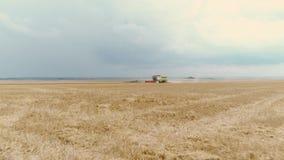 收获在大领域的农业组合麦子 股票录像
