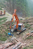收获在奥地利的木材 库存照片
