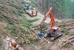 收获在奥地利的木材 免版税库存照片