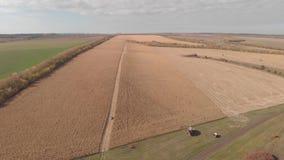 收获在秋天地平线天线的玉米,从空气的射击 影视素材