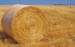 收获在达令草地Qld Aust的干草。 图库摄影