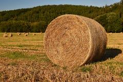 收获在金黄领域风景的干草保释金 夏天与干草堆的农厂风景美好的日落背景的  图库摄影