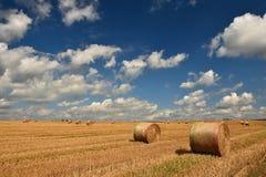 收获在金黄领域风景的干草保释金 夏天与干草堆的农厂风景美好的日落背景的  免版税图库摄影