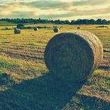 收获在金黄领域风景的干草保释金 夏天与干草堆的农厂风景美好的日落背景的  库存图片