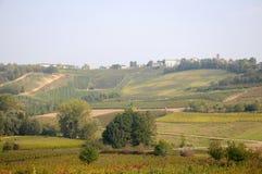 收获在Pavese 10月Oltrepo意大利 库存照片