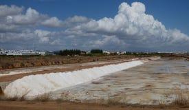 收获在Tavira附近的盐 库存照片