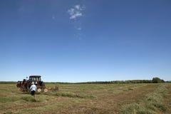 收获干草,亚伯大,加拿大 库存照片