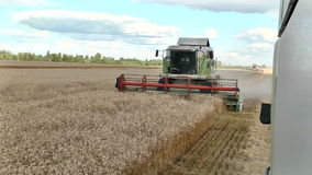收获成熟麦子联合收割机 影视素材