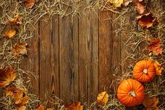 收获或感恩背景用金瓜和秸杆 免版税库存照片