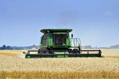 收获托莱多麦子 免版税库存照片