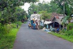 收获木棉和装载在卡车在Java印度尼西亚 免版税库存图片