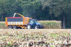 收获玉米的拖拉机的农夫 免版税库存图片