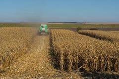 收获由一个组合的玉米在反对干净,蓝天的一个领域 免版税库存图片