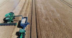 收获由组合,麦子收获 股票视频