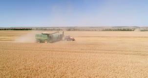 收获由组合,麦子收获 股票录像