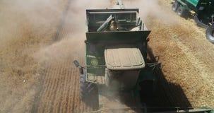 收获由组合,麦子收获 影视素材