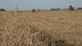 收获的过程与组合,会集从领域的成熟燕麦粮食作物 4K 股票视频