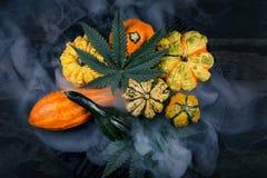 收获秋天背景用金瓜,并且大麻生叶 免版税库存照片