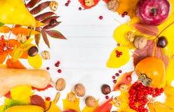 收获秋天静物画与叶子、核桃和栗子的 免版税库存图片