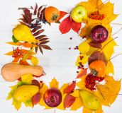 收获秋天静物画与叶子的在白色木书桌wi 免版税库存照片