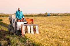 收获米工作者的农场 免版税库存图片