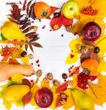 收获美丽的秋天静物画与叶子,核桃的和 免版税图库摄影
