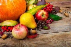 收获背景用南瓜,苹果,梨,五颜六色的叶子 库存图片