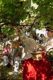 收获葡萄的妇女在马德拉岛Wine Company的葡萄园里在马德拉岛酒节在Estreito de Camara de罗伯斯,做 免版税库存图片