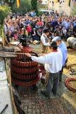 收获葡萄:葡萄收获的节日在chusclan vil的 库存图片