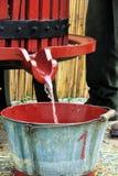 收获葡萄:葡萄收获的节日 免版税库存照片