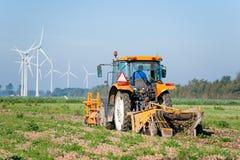 收获葱拖拉机的农夫 免版税库存图片