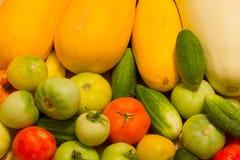收获蔬菜 免版税库存照片