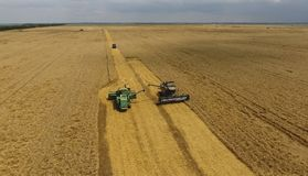 收获麦子收割机 农业机器收获五谷 库存照片