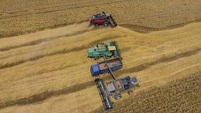 收获麦子收割机 农业机器收获五谷 免版税库存图片