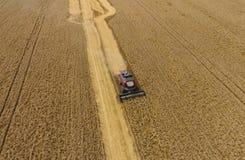 收获麦子收割机 农业机器收获五谷 免版税库存照片