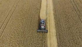 收获麦子收割机 在领域的农业机器收获五谷 图库摄影
