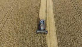 收获麦子收割机 在领域的农业机器收获五谷 免版税库存图片